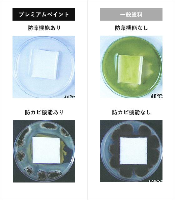 バイオ技術による「防藻・防カビ機能」の説明図